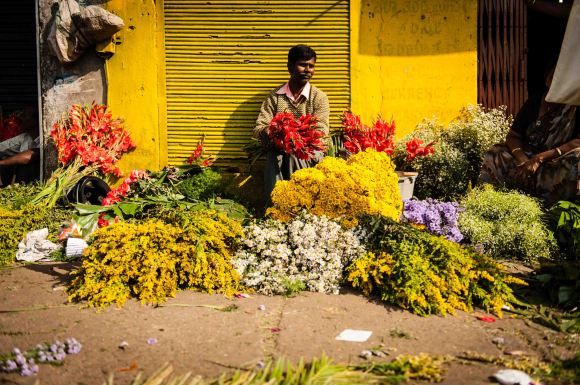 Photoshoot location South India at the beautiful flower market.